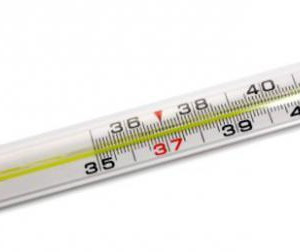 Термометр ртутный (без ртути)